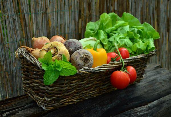voeding, een belangrijke ingrediënt van een goede gezondheid