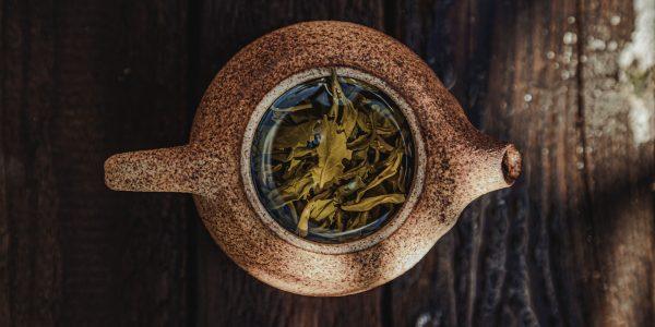 theestruik - camellia sinensis - gedroogde thee